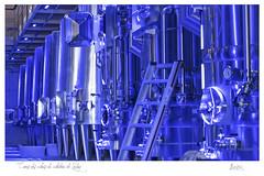 Cuves des chais du château de Valmy (jp Loazo) Tags: cuves chais valmy vin caves caveau pyrénéesorientales 66 argelessurmer