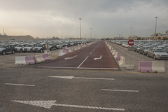 Vehicles ready to be exported, at dubai port terminal 3 (filippo.bassato) Tags: dubai emiratiarabi febbraio 2017 porto macchine import export autovetture