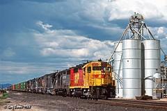 Kodachrome Westman (C.P. Kirkie) Tags: southernpacific sp spsunsetroute sonorandesert sunsetroute arizona willcoxarizona willcox gp35 emd trains railroads spsfkodachrome spsf