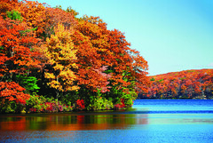 Autumn foliage over lake (Mercury7) Tags: autumn background beautiful blue camping color colorful creek delaware fall foliage forest green hiking lake landscape mountain nature november october outdoor panorama park peaceful pond red reflect reflection river rural scene scenery scenic september serene sunny symmetric symmetry trail tranquil tree trees vermont vibrant water wild wildness woods yellow