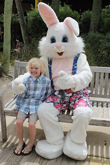 Easter Bunny 035