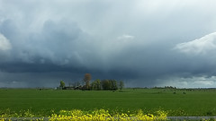 (Marga van Hulzen) Tags: langs de a9 boerderij farmhouse koolzaad threatening dreiging rapeseed zoheetdatechtinhetengels lucht sky