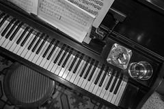 Piano man (Mario Donati) Tags: cenitalshotfromabove 52stilllifes nikon d3100 sigma1020mm bw
