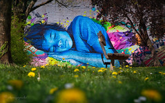 technicolor dream (cherryspicks (on/off)) Tags: technicolordreams lonac chez186 street art wall sleeping child color zagreb croatia urban city park dandelion flower lowpov