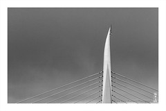 Golden Horn Metro Bridge (alamond) Tags: goldenhorn metro bridge tower istanbul turkey m2 bw blackandwhite monochrome lines cable spann canon 7d markii mkii llens ef 70300 f456 l is usm alamond brane zalar architecture modern contemporary