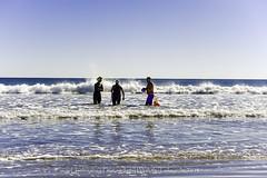 Office Water Cooler (uselessbay) Tags: 2016 beach middletown nikon nikond700 places rhodeisland secondbeach uselessbayphotography williamtalley d700 fall fullframe landscapes uselessbay water ngc