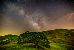 Magic Tree (stuanderson7) Tags: grass landscape nature stars mountains outdoor hills clouds california countryside trees sky sonya6000 nightscape samyang12mmf2 lightpollution longexposure milkyway night