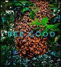 Bee Good  #bee #be #bees hone#honey #nature #good #kin#kind #insect #hive #together #protect #pollen #green #busy #great #happy #beauty #many #buzz #earth #sweet #honeycomb #share #give #try #endure #think (GILDED LITE!) Tags: bee be bees hone honey kin kind insect hive together protect pollen green busy great happy beauty many buzz earth sweet honeycomb share give try endure nature good think