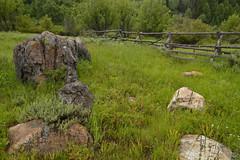 logan canyon spring by kallen photography http://flic.kr/p/6ARHej http://ift.tt/2nW37Or (#AggieLife) Tags: ifttt flickr spring rocks limestone logan logancanyon fenceline