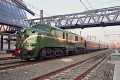 LLeida (REGFA251013) Tags: 7722 1812 tren train galaico expreso galicia monforte de lemos renfe adif historico traslado verraco