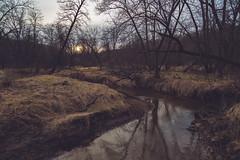 Prairie Creek - Nerstrand-Big Woods State Park, Minnesota (Tony Webster) Tags: minnesota nerstrand nerstrandbigwoods nerstrandbigwoodsstatepark oakbridge prairiecreek whiteoaktrail creek river sunset unitedstates us