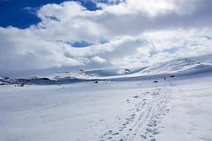 Snow-covered Hardangervidda