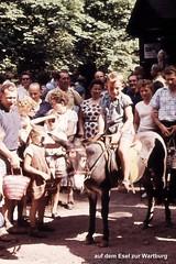Eselsritt zur Wartburg 1959 (Knipser@) Tags: eisenach wartburg 1959 hawe ddr thüringen