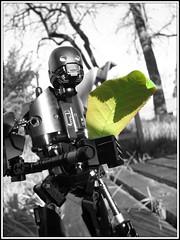 Like a Leaf on the Wind (LegoKlyph) Tags: k2so starwars tudyk wash leaf wind sad firefly scifi robot rogue blackandwhite bandw build lego custom