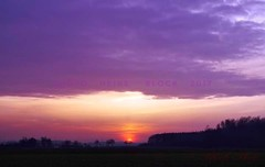 painted by low sun (eikeblogg) Tags: clouds sky sunsets moods rural colorful daysend lowsun nightfall silhouettes landscapes skylight pentaxphotography