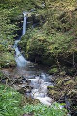 Above Watermeet (frontios) Tags: frontios scottbartlett outdoors north devon northdevon lynton lynmouth spring pentax k5 35mm waterfall watersmeet water river stream long exposure rocks