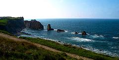 LA ARNIA (agustincordoba_g) Tags: agustin cordoba guzman arte mar marinas flores cielo muelles columnas muñecaspaisajesmacetastrajes