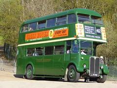 London Transport RT3491 - LYR910 (RL Buses) Tags: bus busrally busmuseum londonbusmuseum cobham brooklands preservedbus