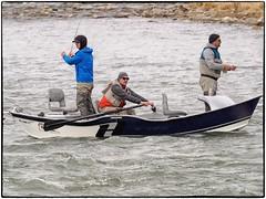_4150099 (geelog) Tags: alberta bowriver calgary driftboat flyfishing water