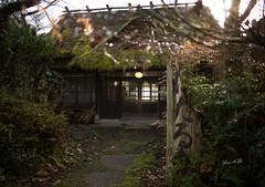 留一盞燈 (lgf55555(基福)) Tags: 福岡 燈 露珠 舊屋 老房
