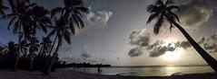 IMG_20170403_172442-01 (Ciscobolo) Tags: wonderfulworld martinique sunset beach paradise palms sea caribbean magiclight ciscophoto clouds eden