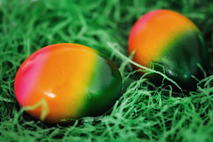 "Day 106/365 - ""Egg"" (Little_squirrel) Tags: 365the2017edition 3652017 day106365 16apr17 eggs egg colorful pair gras green orange pink happyeaster spring easter"