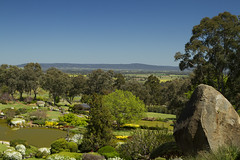 Cowra Japanese Gardens, Cowra (Anna Calvert Photography) Tags: flowers trees sky plants lake mountains nature water garden landscape spring scenery rocks display blossoms structures australia ponds japanesegardens pathways cowra cowrajapanesegardenculturalcentre