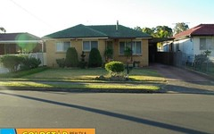 45 Chelsea Drive, Canley Heights NSW