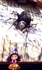 BAD-Oct 1, 2014 Creepy Crawlies