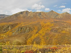 Northfork Mountain
