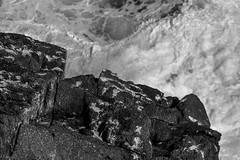 rock, surf, foam, ocean, looking down, Gull Rock, Monhegan, Maine, nikon D40, nikon nikkor 105mm f-4, 9.22.14 (steve aimone) Tags: ocean blackandwhite monochrome rock rocks surf maine monochromatic foam nikkor atlanticocean f4 monhegan grays 105mm monheganisland gullrock primelens nikond40 nikonprime