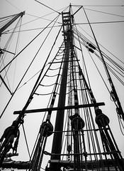 for every line, a purpose (4tun8bug) Tags: ship sail tall mast ropes tallship knots