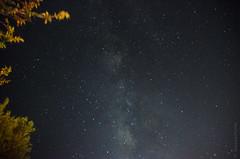 Milky Way || Amarillo, Tx (JessicaHume.) Tags: longexposure camping trees sky night stars nikon driving texas unitedstates space roadtrip amarillo astronomy milkyway d7000