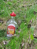 MEXICO (streamer020nl) Tags: grass mexico bottle empty tequila sierra cap gras sombrero flasche fles 2014 041014