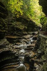 DSC_0055 (Michael P Bartlett) Tags: water river rocks stream falls waterfalls gorge watkinsglenstatepark