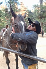 P9080350 (bluegrass0839) Tags: canyon national hoodoo bryce zion zionnationalpark brycecanyon nationalparks narrows hoodoos horsebackride parkthe