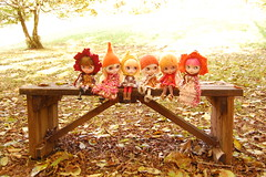 DSC_0021 (Lindy Dolldreams) Tags: autumn bench dolls hats custom blythedoll
