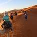 Sunrise Dunes of Merzouga_8244
