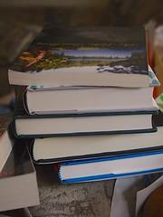 P9140241 books 20130914 (caligula1995) Tags: reading books 2013