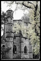 Alter Turm in Mettlach (christianreimer) Tags: autumn tower deutschland blackwhite herbst baum saarland selectivecolor colorkeying mettlach schwarzweis alterturm selektivefarbe