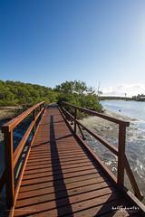 Bridge on Jabiru Island (Kelly Hunter) Tags: morning landscape qld queensland boardwalk goldcoast jabiruisland philhillenvironmentalpark