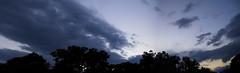 CRW_1405 (sir_mac_alot66) Tags: blue sunset sky tree beautiful night clouds wow amazing cool fotografie purple himmel cielo fotografia fotografa   fotograph fotoraflk
