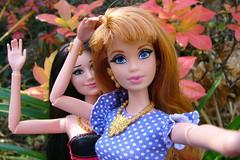 Tag Game: Doll Selfie (Hrbovec) Tags: doll dolls barbie mattel midge raquelle lifeinthedreamhouse