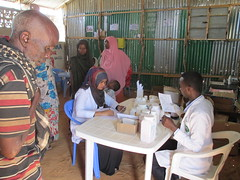 Over 1 million people are now in crisis and face acute food insecurity, up by 20 percent from just six months ago. (EU Humanitarian Aid and Civil Protection) Tags: echo eu conflict fighting humanitarian somalia idps