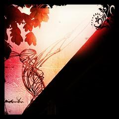 Angel of Light (dareangel_2000) Tags: art water statue hoop river circle canal waterfront belfast ring edge northernireland foundobject lagan coantrim angeloflight thethingwiththering dariacasement milleniumangel