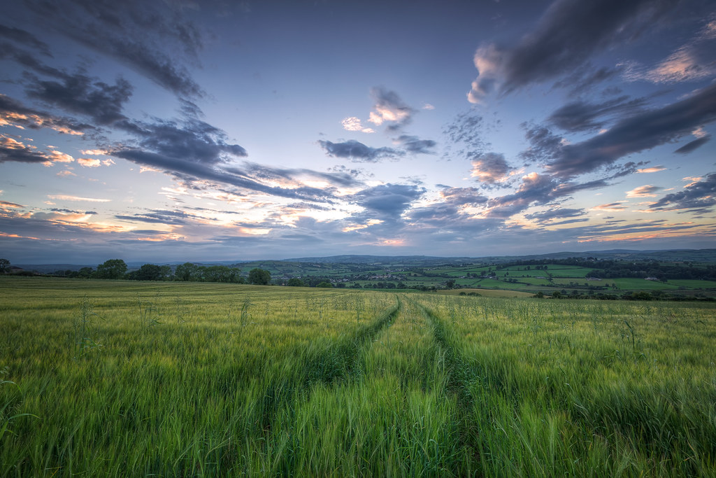 The World's most recently posted photos of croghan and ireland