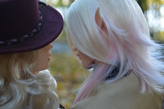 Autumn romance.