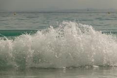 Eclat de vie (jacqueschoeffel) Tags: mer corse vague plage palombaggia