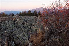 (Birch in Red) (Kirill & K) Tags: autumn red sunlight tree nature sunrise landscape stones september birch  mounts        bashkiria   southural iremel