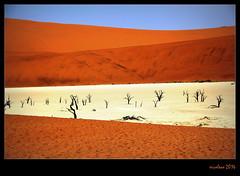 Deadvlei (xicoleao) Tags: africa nature landscapes desert dunes namibia deadvlei